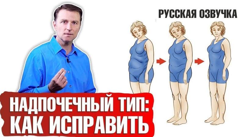 НАДПОЧЕЧНЫЙ ТИП ТЕЛОСЛОЖЕНИЯ Как исправить русская озвучка