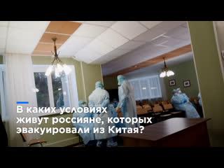 """""""классно, если у меня будет коронавирус"""" россиянка о жизни в карантине"""