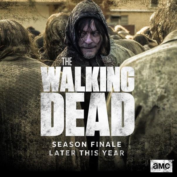В 11 сезоне «Ходячих мертвецов» появится новый загадочный персонаж Как передает Deadline в эксклюзивном материале, к актерскому составу одиннадцатого сезона «Ходячих мертвецов» присоединилась