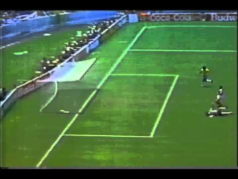 Brazil vs France World Cup 1986 Careca Goal