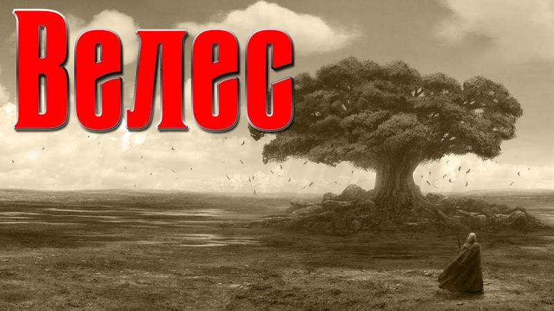 Славянский бог Велес. Мифы и легенды Древней Руси. Бог мудрости славян. Славянская мифология.