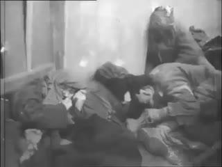 Строго оун-упа не люди, а нелюди (+21) ukraińcy z oun i upa to nie ludzie, to zwierzęta
