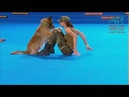 FCI Dog dance World Championship 2016 Freestyle final Lusy Imbergerova and Deril Italy