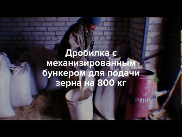 Дробилка с механизированным бункером для подачи зерна на 800 кг