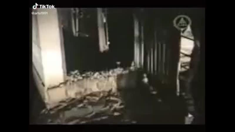 Мышиный апокалипсис 2.