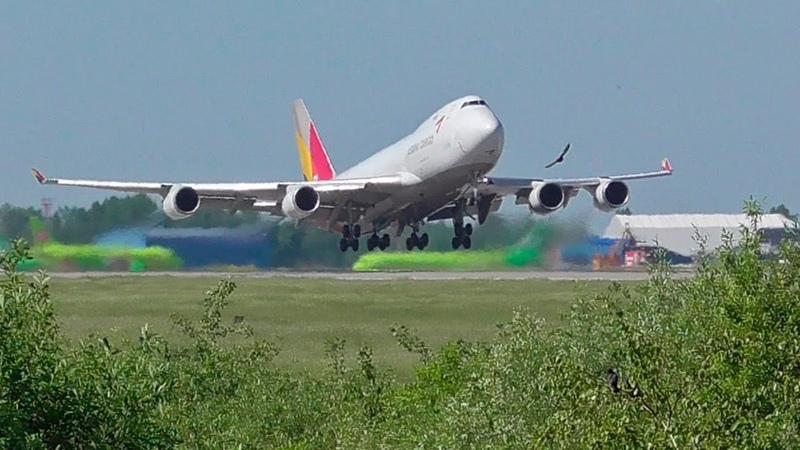 Боинг 747 словил козла Скоростное отделение Домодедово 2019