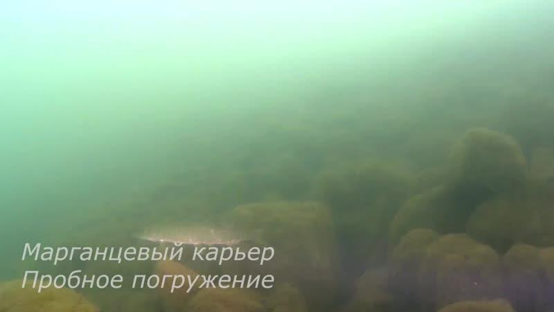 25 08 19 короткая версия Марганец Пробное Анна.mp4