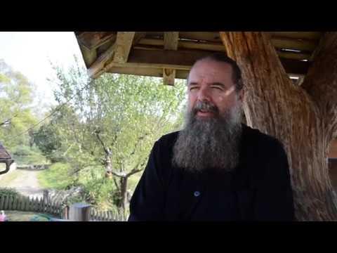 Я тоже РУССКИЙ Две мечты сербского поэта Петар Драгойлович