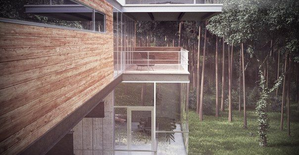 Modern Cabin In The Forest — Wonder Vision