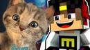 Майнкрафт Выживание ЕвгенБро и милый Котик Майнкрафт 2017 Minecraft для детей мультик игра и Дети