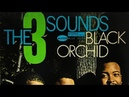 Tadd s Delight The 3 Sounds