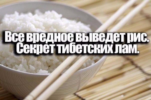 Все вредное выведет рис. Секрет тибетских лам.