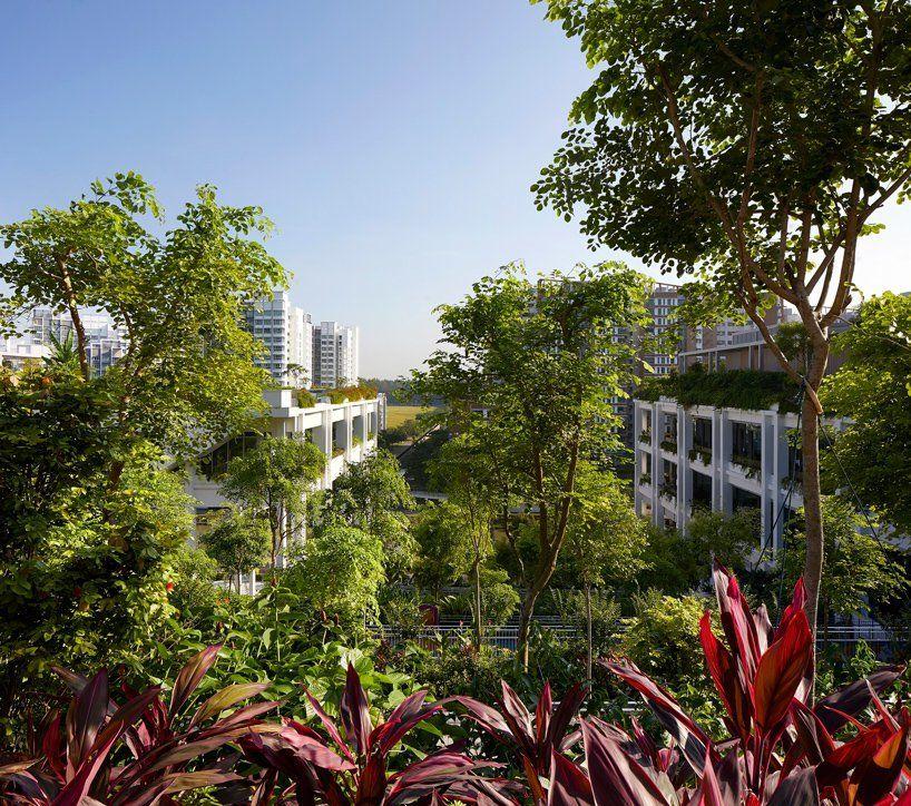 Многофункциональный центр в Сингапуре