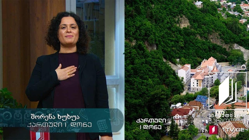 ქართული ენა 1 დონე 1 გაკვეთილი