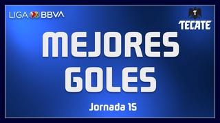 Мексика. Лига MX. Лучшие голы 15-го тура 2020/21