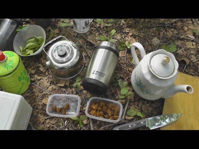 Как заварить лесной чай из чаги Способы приготовления