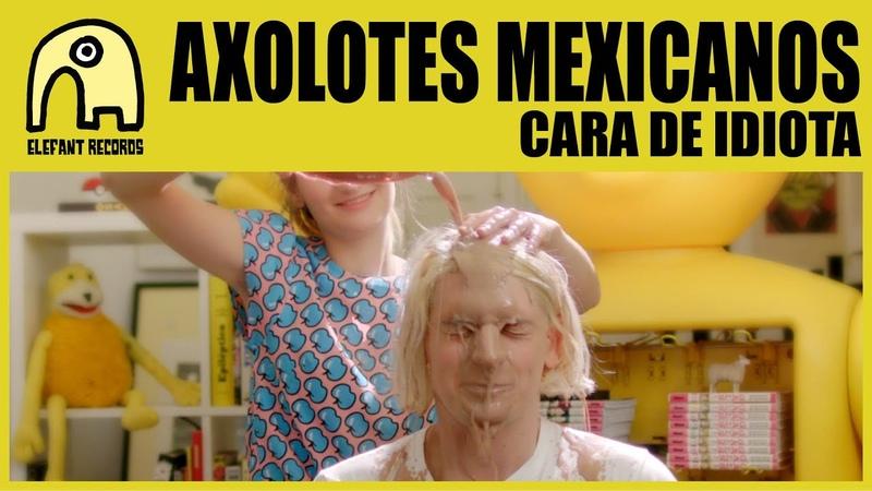 AXOLOTES MEXICANOS Cara De Idiota Official
