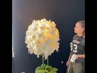 Видео от Валентина Молокова | Онлайн-школа больших цветов