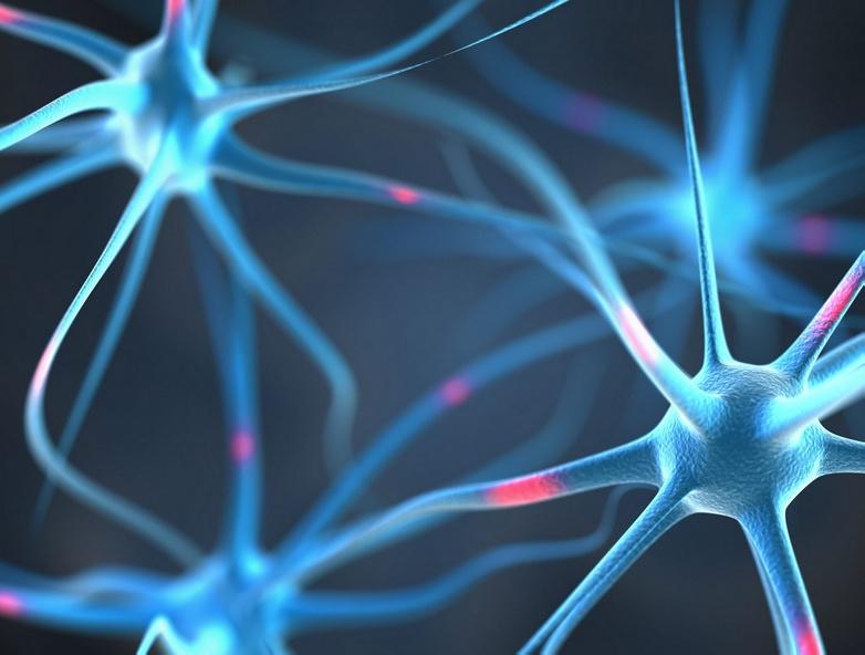 Читать Заболевания нервной системы (Часть 2)