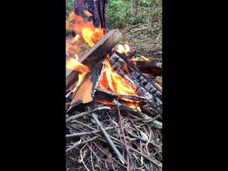 Video by Marina Kazimova