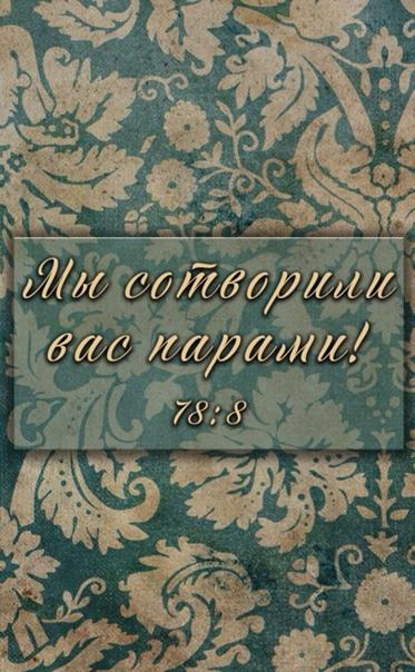 Мы сотворили вас парами! 78:8   никах   паблик