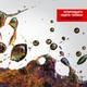 Золотая Коллекция CD1 - Земфира / Бесконечность