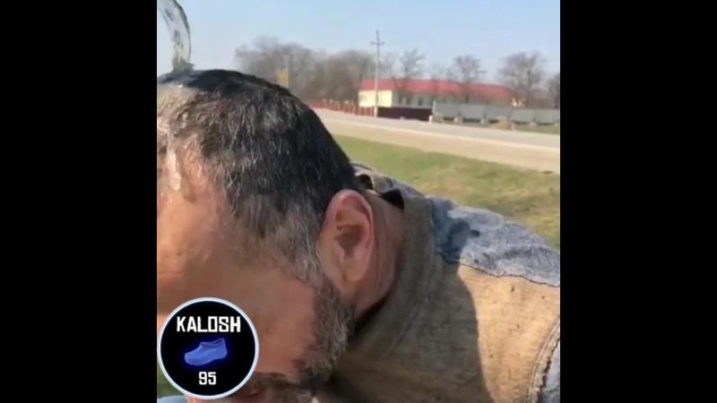 Kalosh.95_20200320_1.mp4