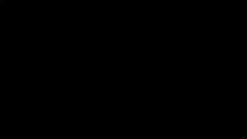 Отпугиватель тараканов и клопов ультразвуковой Цунами Универсал электронный