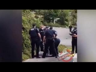 Видео от Sarah Qc