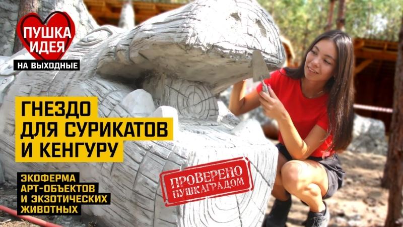 Экологическая ферма Славянское гнездо деревня Бекленищева Ревун Каменск Уральский