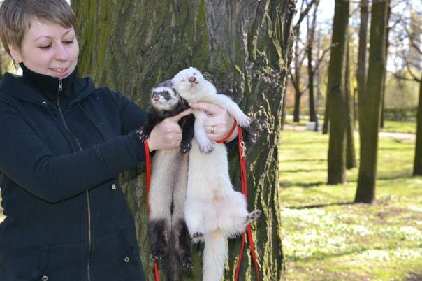 Антонина Зотова, 38 лет, Санкт-Петербург, Россия