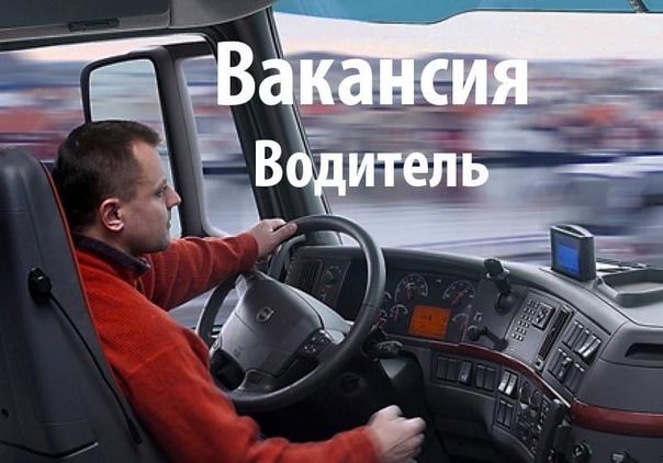 Требуется Водитель с Котегориями СЕ, на еврофуру. ...