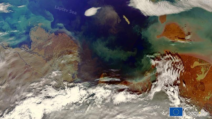 Море Лаптевых полностью освободилось ото льда