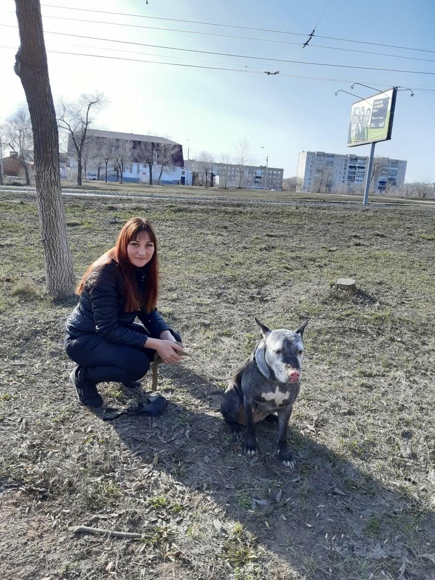 Галина, 38, Buguruslan