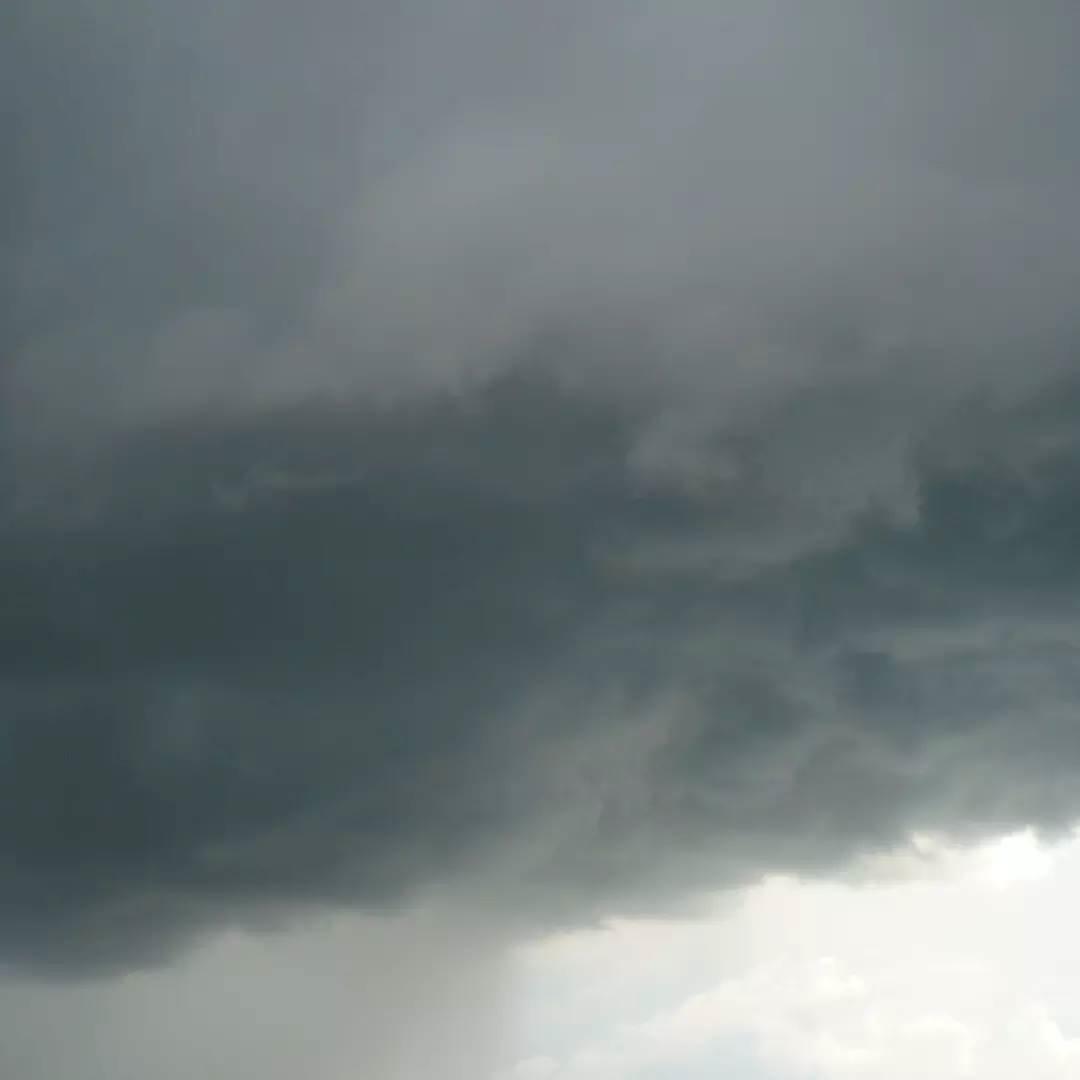 Жителей Саратовской области предупреждают о грозе и шквалистом ветре
