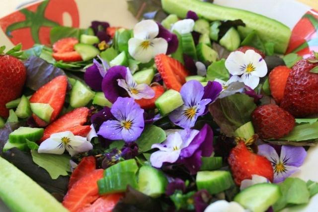 Какие цветы можно употреблять в пищу?