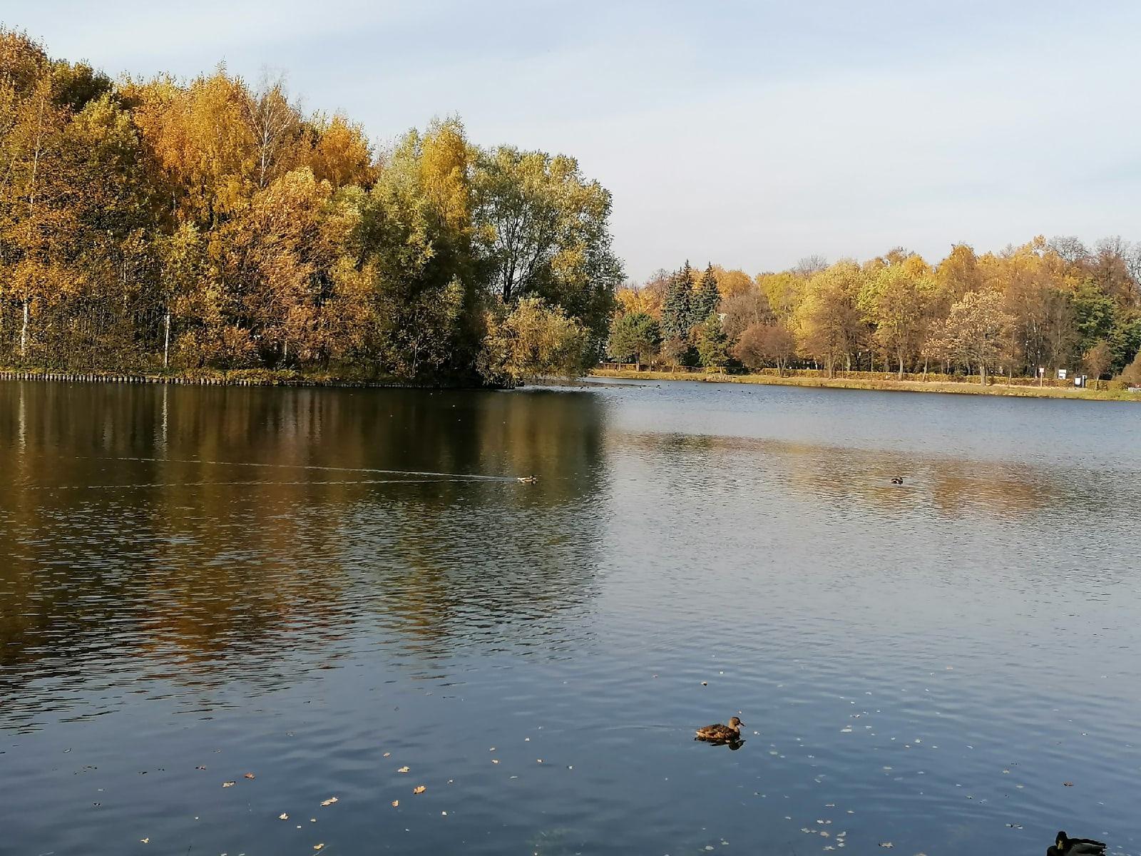 Делитесь, где любите гулять осенью?