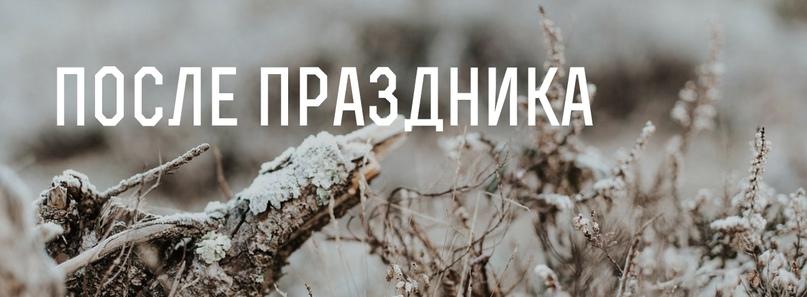 Новый год без нервов и отходов, изображение №30