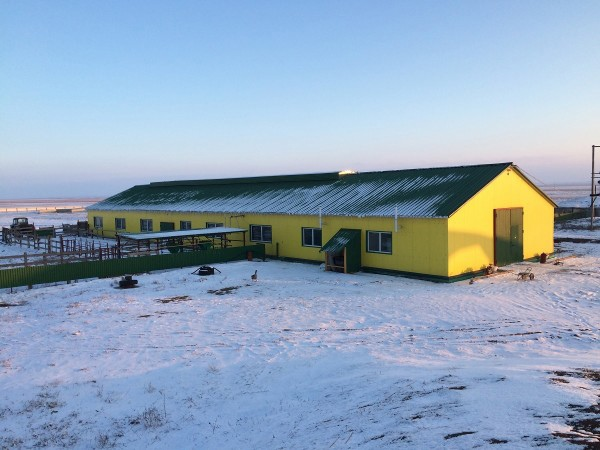 Ферма крс под ключ цена Славянск на Кубани