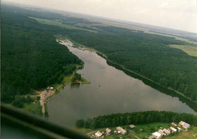 Удмуртия заняла 10 место в рейтинге лесовосстановления