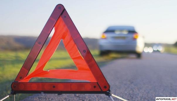 В Волжском районе автомобиль сбил трех кабанов из ...