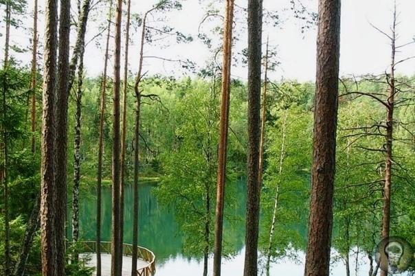 Озера с дурной славой. В мире существуют сотни озер, с которыми связаны таинственные истории и аномальные явления. Страх местных жителей перед такими озерами, пользующимися дурной славой,