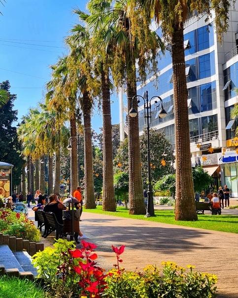 Сочинский Арбат. Главная пешеходная улица курорта, вечнозелёная и цветущая Навагинская. ???? Сочи