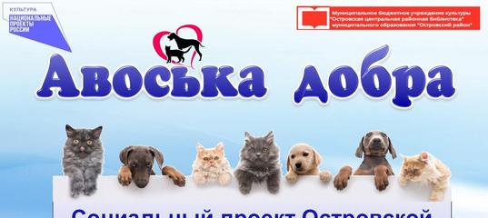 Авоська добра - социальный проект Островской центральной районной библиотеки