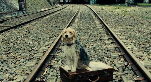 ЖИЛ - БЫЛ ДРУГ... Давно я уже на железной дороге тружусь. Слесарь, помощник машиниста, машинист... Дело к пенсии идёт уже, ну да ладно... Не об этом мой рассказ. Помню, залажу я в локомотив