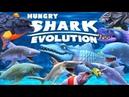 2 HANGRY SHARK EVOLUTION🦈 ОБЗОР ОБНОВЛЕНИЙ 2 часть 😎