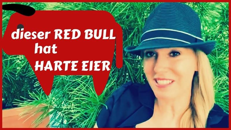 Dieser RED BULL hat HARTE EIER