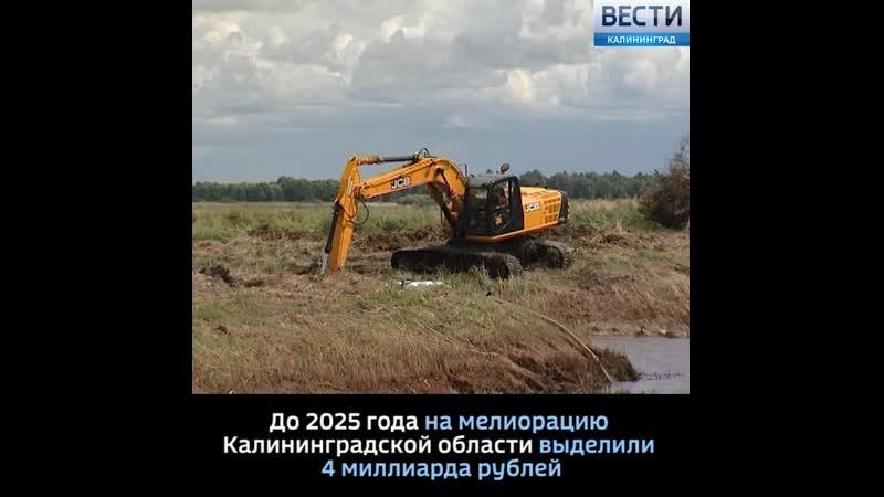 До 2025 года на мелиорацию Калининградской области выделили 4 миллиарда рублей