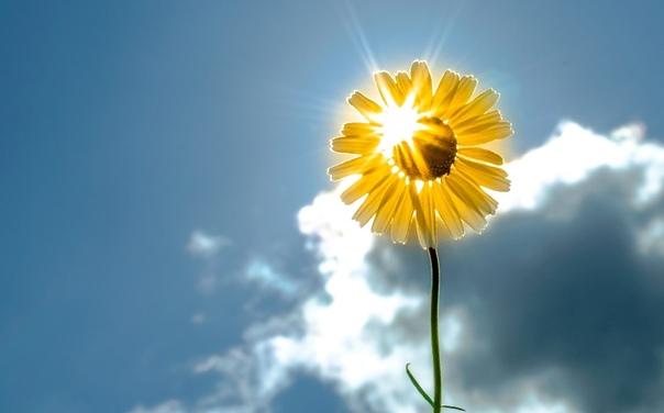 Народные приметы о солнце и погоде.