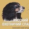 Русский Охотничий Спаниель.Нижний Новгород.